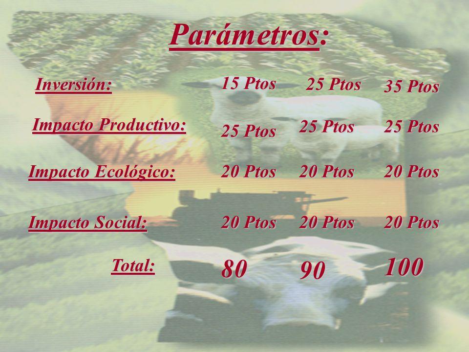 Parámetros: Inversión: 25 Ptos Impacto Productivo: 20 Ptos 20 Ptos 20 Ptos Impacto Ecológico: Impacto Social: Total: 100 25 Ptos 35 Ptos 90 20 Ptos 25 Ptos 80 25 Ptos 20 Ptos 20 Ptos 15 Ptos