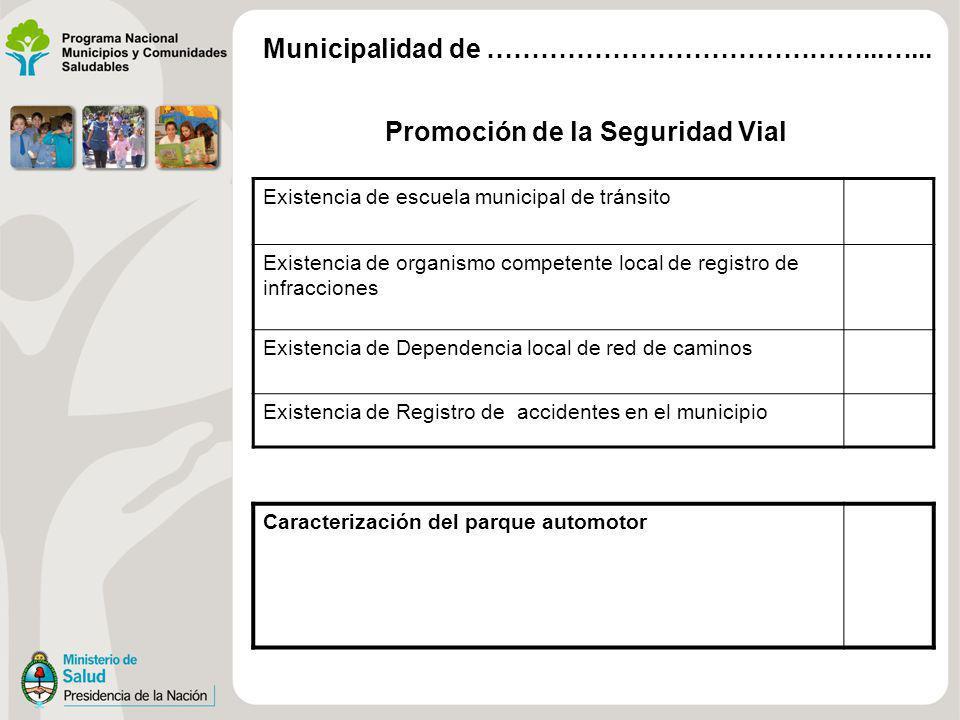 Promoción de la Seguridad Vial Existencia de escuela municipal de tránsito Existencia de organismo competente local de registro de infracciones Existe