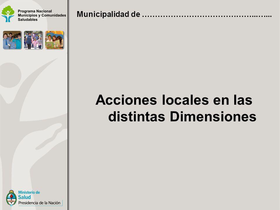 Acciones locales en las distintas Dimensiones Municipalidad de ……………………………………...…...