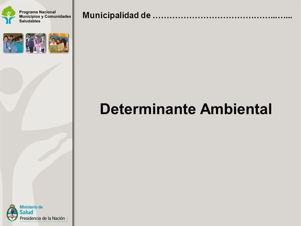Determinante Ambiental Municipalidad de ……………………………………...…...