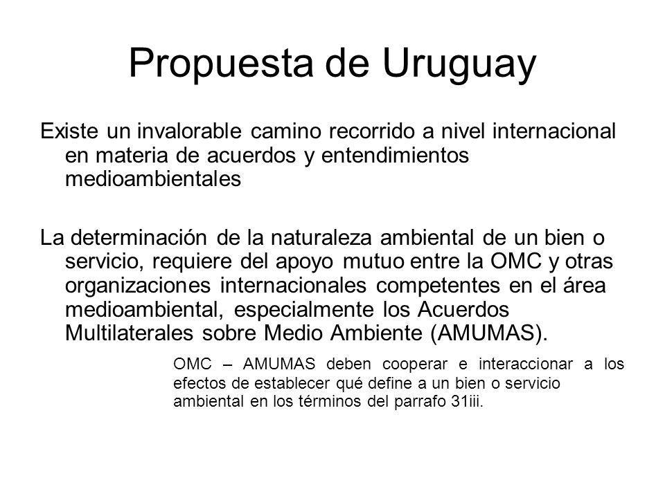 El CCMA debería identificar los bienes y servicios ambientales sobre la base del concepto mas amplio de actividades ambientales Propuesta de Uruguay