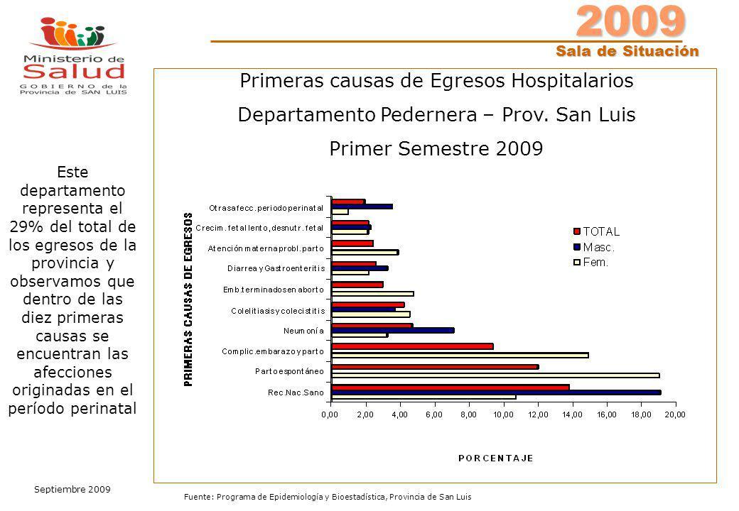 2009 Sala de Situación Sala de Situación Septiembre 2009 Fuente: Programa de Epidemiología y Bioestadística, Provincia de San Luis Primeras causas de