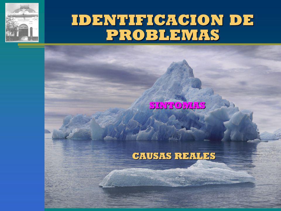Cra. Claudia G. Pasquaré IDENTIFICACION DE PROBLEMAS SINTOMAS CAUSAS REALES
