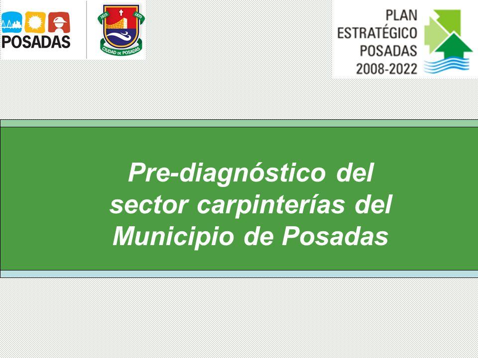 Pre-diagnóstico del sector carpinterías del Municipio de Posadas