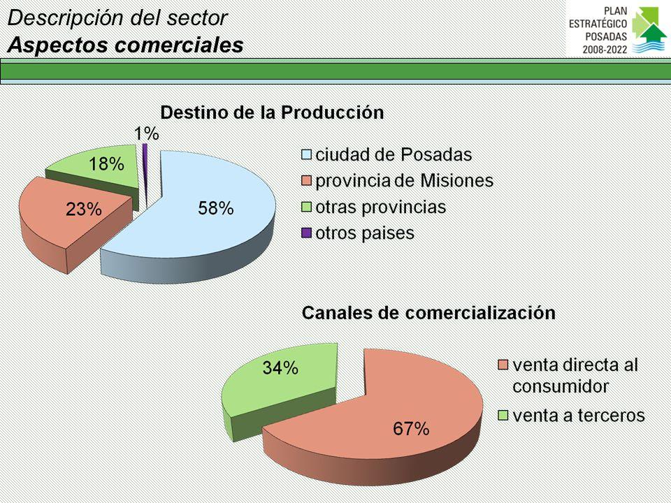 Descripción del sector Aspectos comerciales