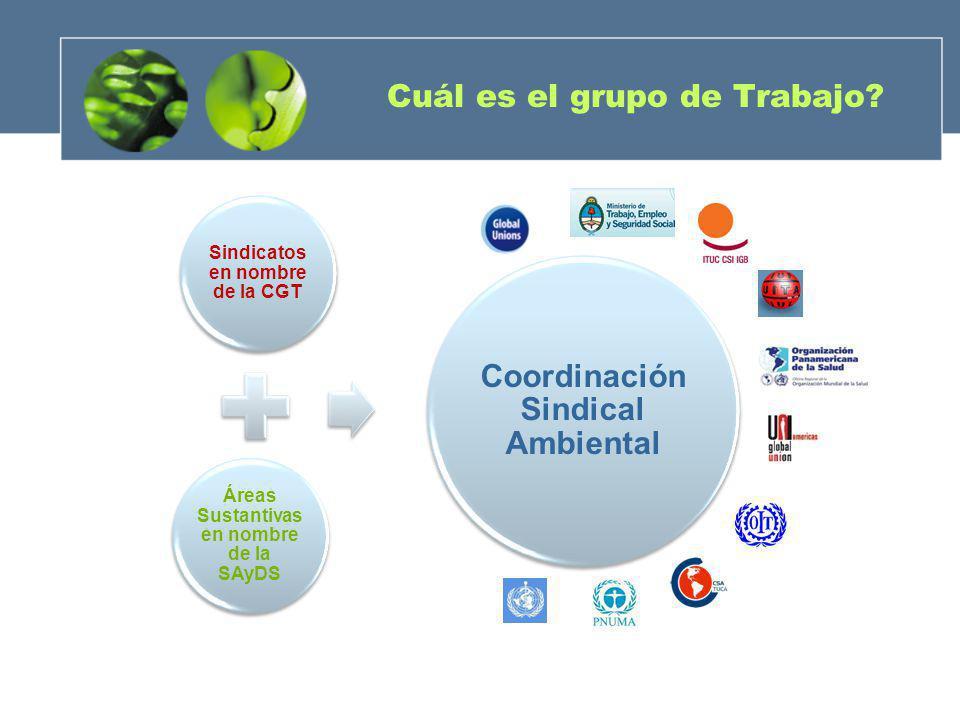Cuál es el grupo de Trabajo? Sindicatos en nombre de la CGT Áreas Sustantivas en nombre de la SAyDS Coordinación Sindical Ambiental