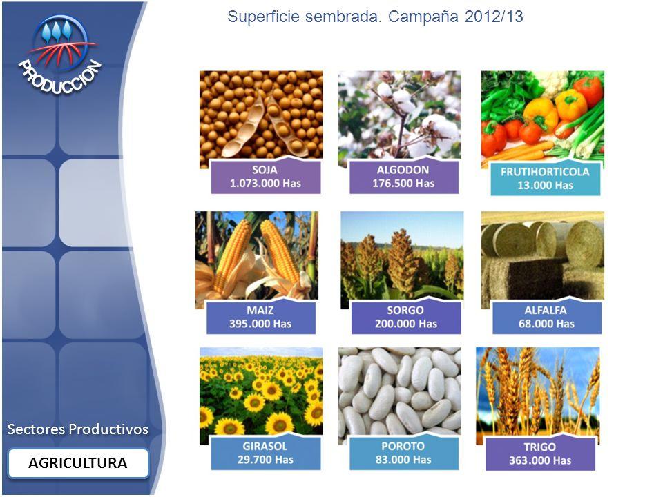 Sectores Productivos AGRICULTURA Superficie sembrada. Campaña 2012/13