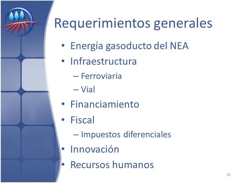 Requerimientos generales Energía gasoducto del NEA Infraestructura – Ferroviaria – Vial Financiamiento Fiscal – Impuestos diferenciales Innovación Recursos humanos 28