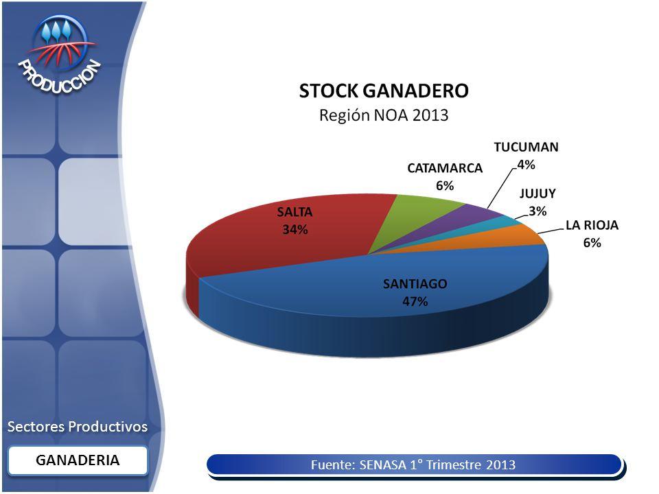 Fuente: SENASA 1° Trimestre 2013 Sectores Productivos GANADERIA