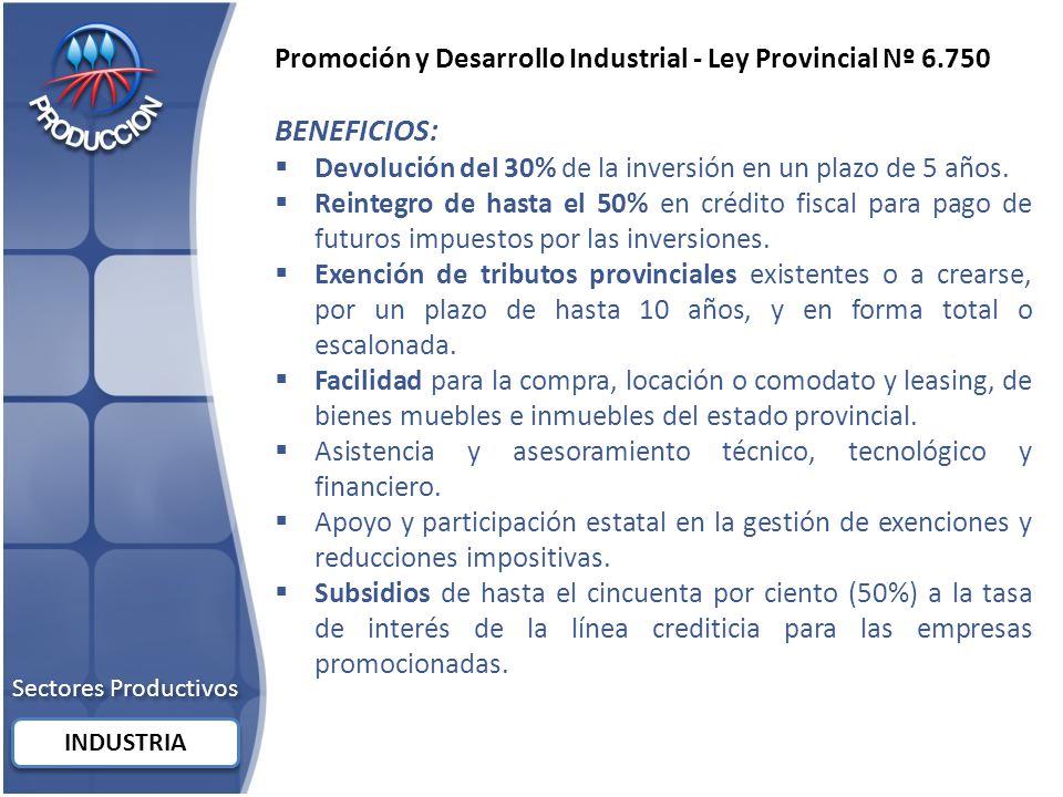 Sectores Productivos INDUSTRIA Promoción y Desarrollo Industrial - Ley Provincial Nº 6.750 BENEFICIOS: Devolución del 30% de la inversión en un plazo de 5 años.