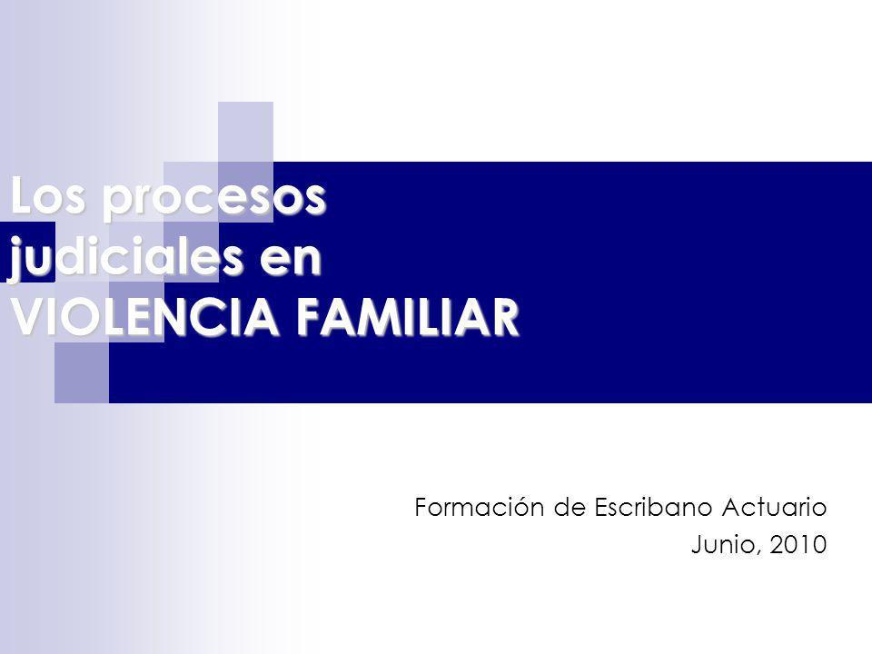 Los procesos judiciales en VIOLENCIA FAMILIAR Formación de Escribano Actuario Junio, 2010