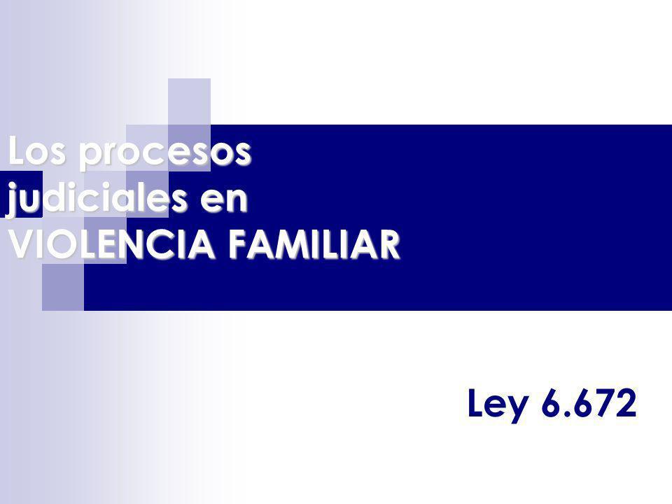 Los procesos judiciales en VIOLENCIA FAMILIAR Ley 6.672