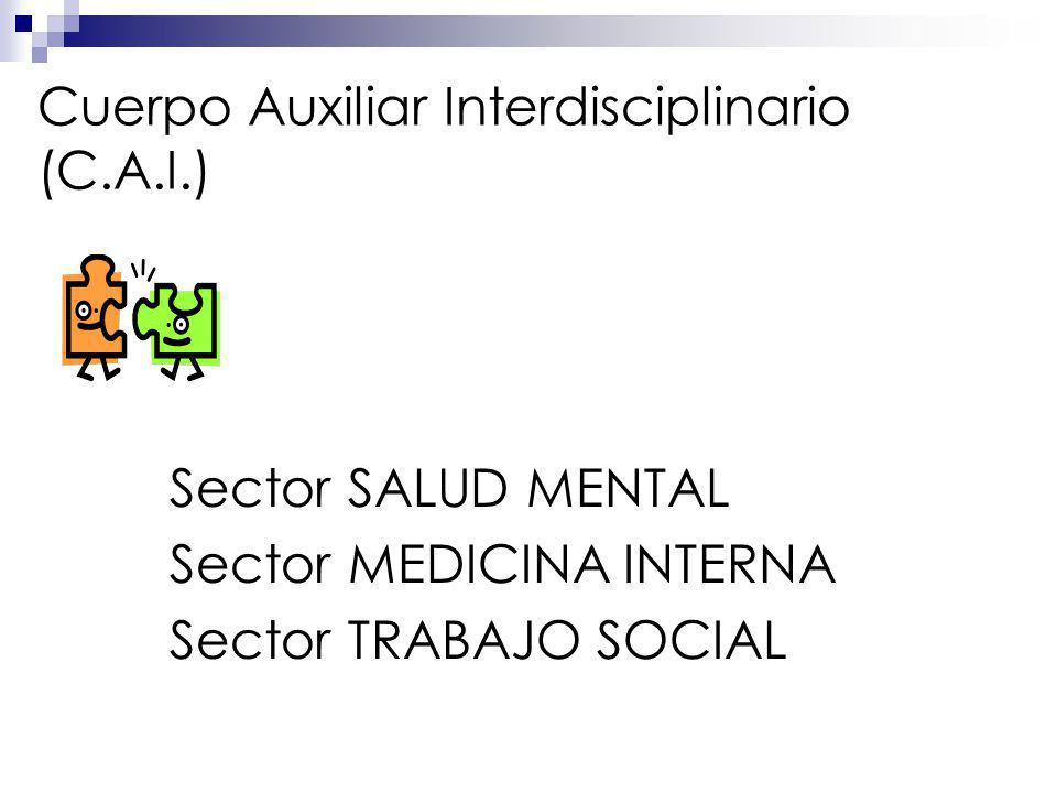 Cuerpo Auxiliar Interdisciplinario (C.A.I.) Sector SALUD MENTAL Sector MEDICINA INTERNA Sector TRABAJO SOCIAL