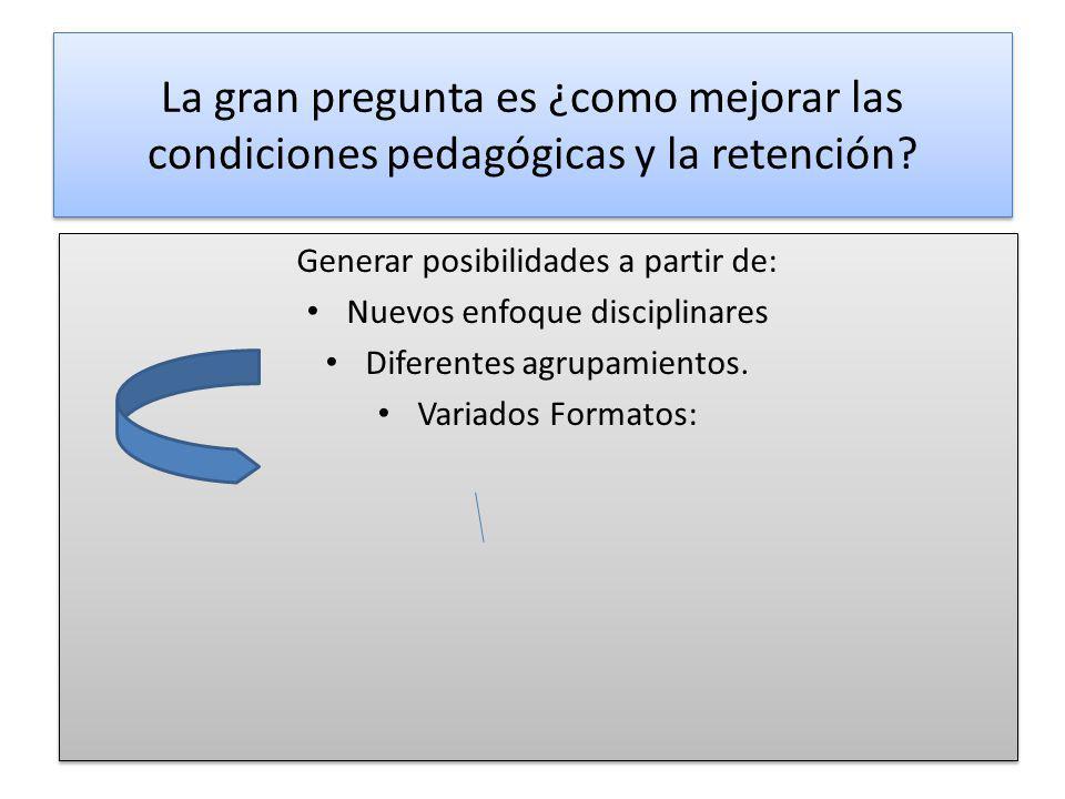 La gran pregunta es ¿como mejorar las condiciones pedagógicas y la retención? Generar posibilidades a partir de: Nuevos enfoque disciplinares Diferent