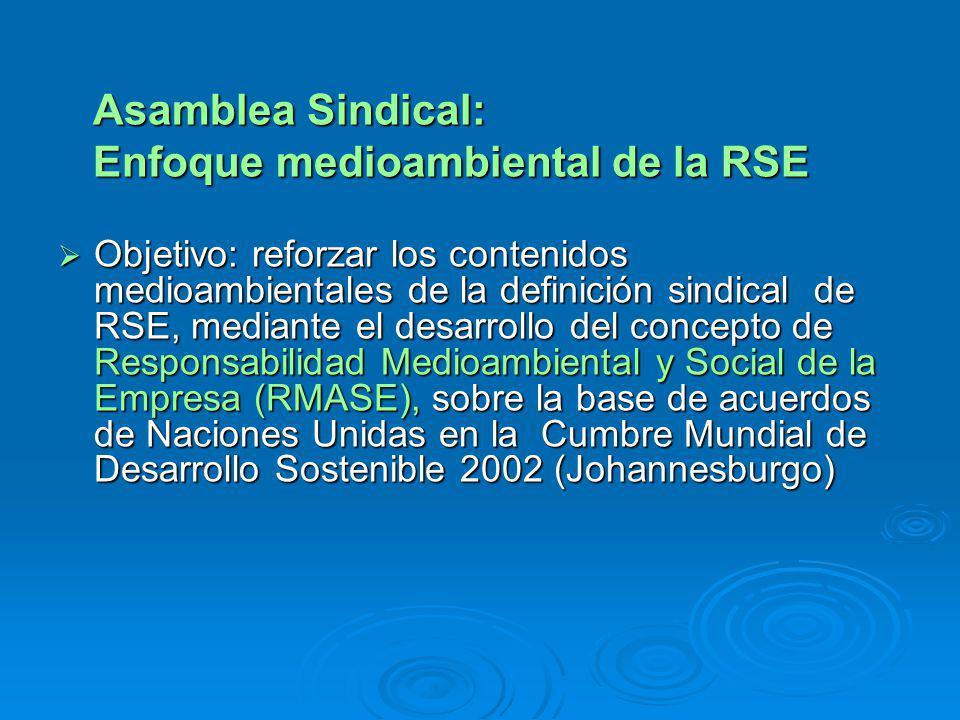 Asamblea Sindical: Asamblea Sindical: Enfoque medioambiental de la RSE Enfoque medioambiental de la RSE Objetivo: reforzar los contenidos medioambientales de la definición sindical de RSE, mediante el desarrollo del concepto de Responsabilidad Medioambiental y Social de la Empresa (RMASE), sobre la base de acuerdos de Naciones Unidas en la Cumbre Mundial de Desarrollo Sostenible 2002 (Johannesburgo) Objetivo: reforzar los contenidos medioambientales de la definición sindical de RSE, mediante el desarrollo del concepto de Responsabilidad Medioambiental y Social de la Empresa (RMASE), sobre la base de acuerdos de Naciones Unidas en la Cumbre Mundial de Desarrollo Sostenible 2002 (Johannesburgo)
