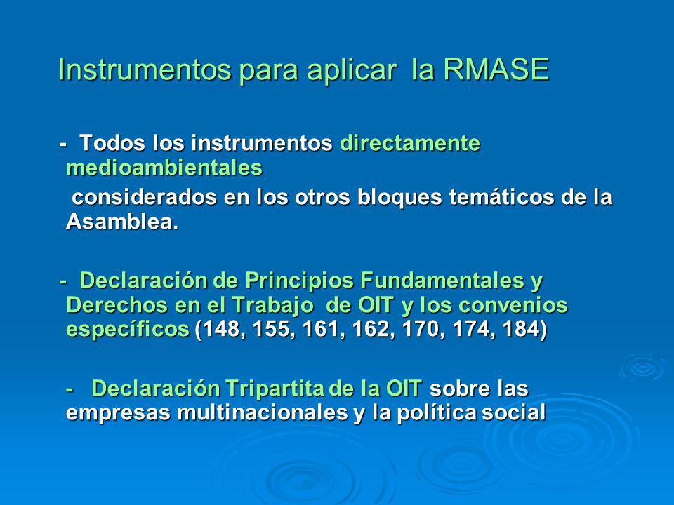 Instrumentos para aplicar la RMASE Instrumentos para aplicar la RMASE - Todos los instrumentos directamente medioambientales - Todos los instrumentos directamente medioambientales considerados en los otros bloques temáticos de la Asamblea.