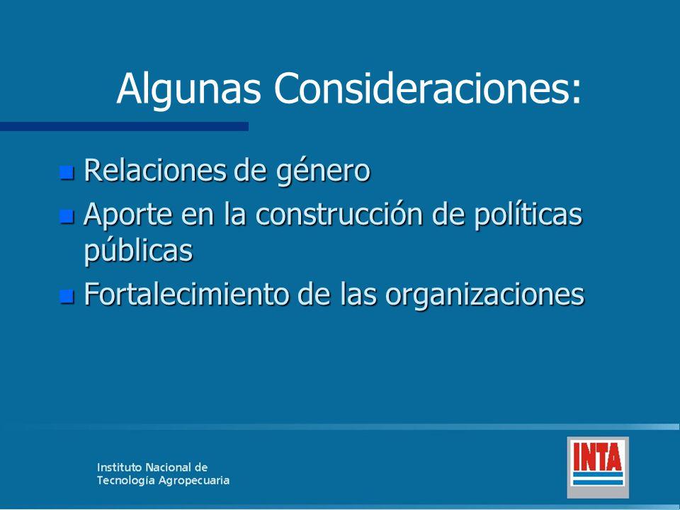 Algunas Consideraciones: Relaciones de género Relaciones de género Aporte en la construcción de políticas públicas Aporte en la construcción de políticas públicas Fortalecimiento de las organizaciones Fortalecimiento de las organizaciones