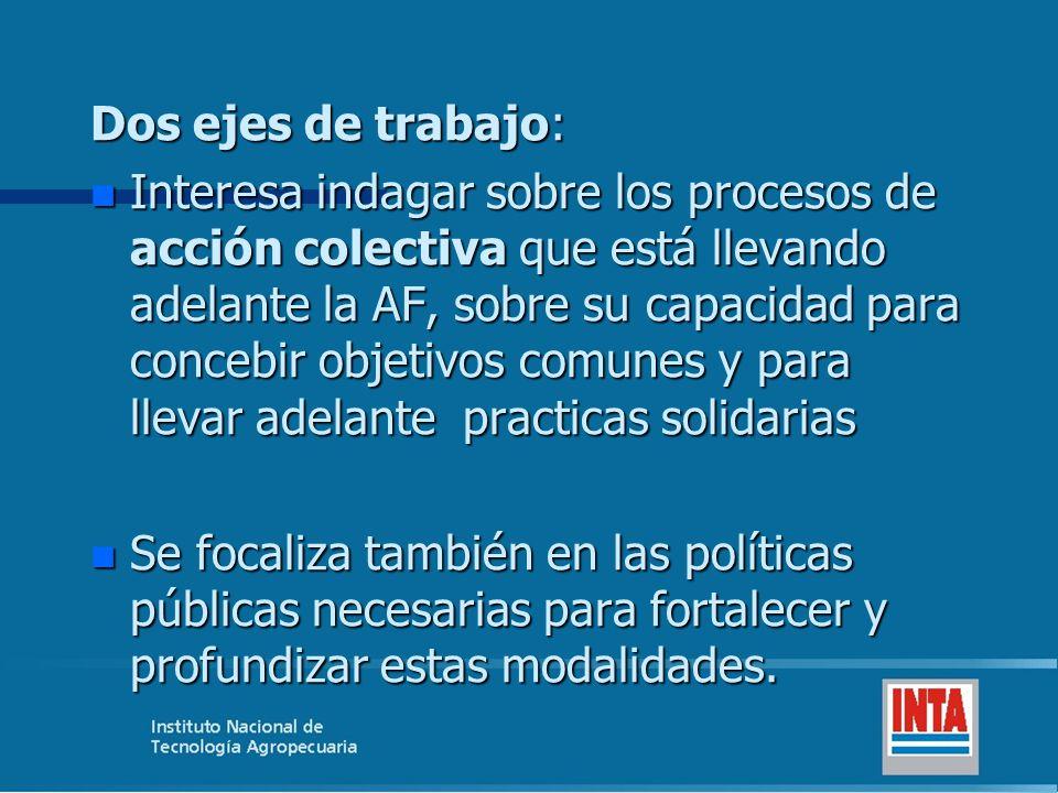 Dos ejes de trabajo: n Interesa indagar sobre los procesos de acción colectiva que está llevando adelante la AF, sobre su capacidad para concebir obje