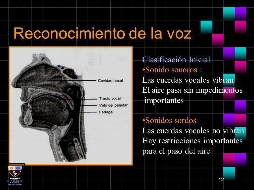 12 Reconocimiento de la voz Clasificación Inicial: Sonido sonoros : Las cuerdas vocales vibran El aire pasa sin impedimentos importantes Sonidos sordo