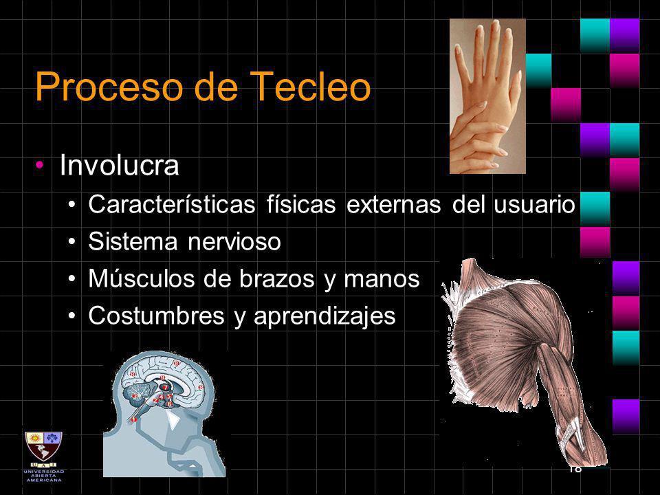 18 Proceso de Tecleo Involucra Características físicas externas del usuario Sistema nervioso Músculos de brazos y manos Costumbres y aprendizajes