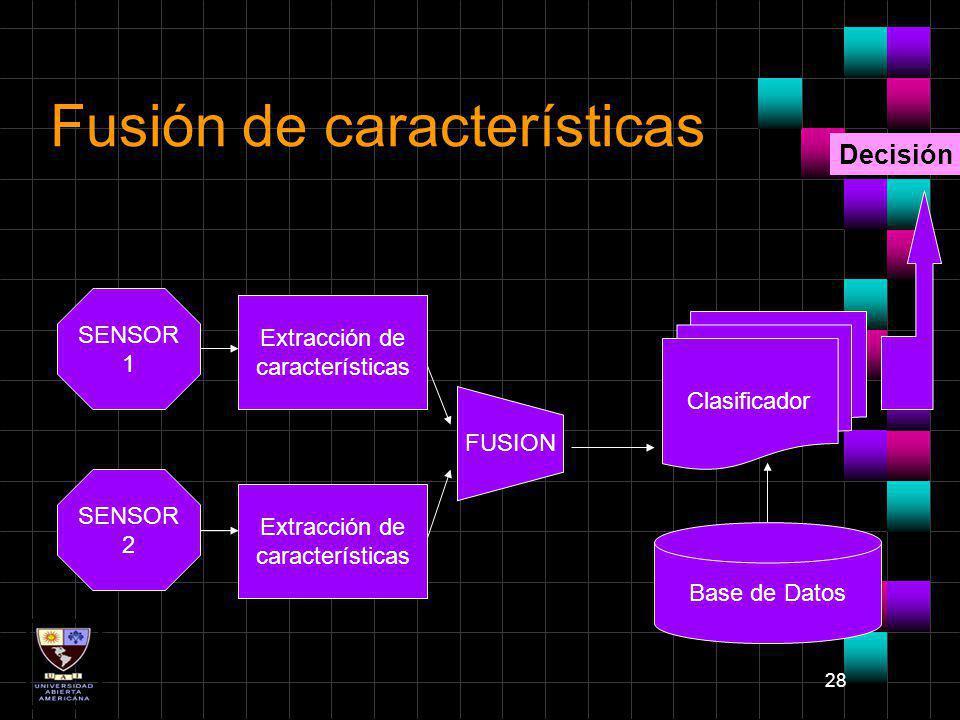 28 Fusión de características SENSOR 1 SENSOR 2 FUSION Clasificador Base de Datos Extracción de características Extracción de características Decisión