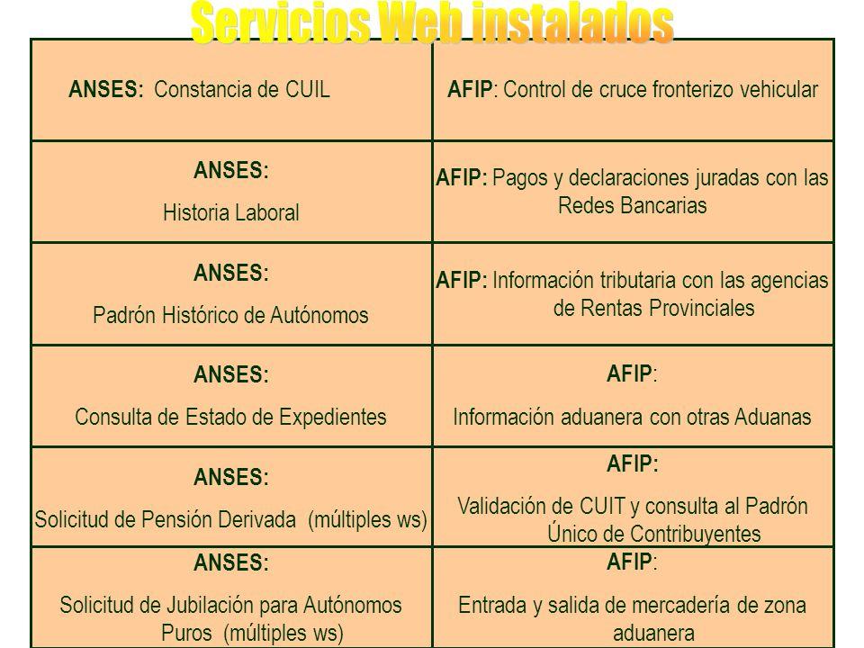 AFIP: Pagos y declaraciones juradas con las Redes Bancarias ANSES: Padrón Histórico de Autónomos AFIP: Información tributaria con las agencias de Rentas Provinciales AFIP : Control de cruce fronterizo vehicular ANSES: Consulta de Estado de Expedientes ANSES: Constancia de CUIL AFIP: Validación de CUIT y consulta al Padrón Único de Contribuyentes ANSES: Solicitud de Pensión Derivada (múltiples ws) ANSES: Solicitud de Jubilación para Autónomos Puros (múltiples ws) AFIP : Entrada y salida de mercadería de zona aduanera ANSES: Historia Laboral AFIP : Información aduanera con otras Aduanas