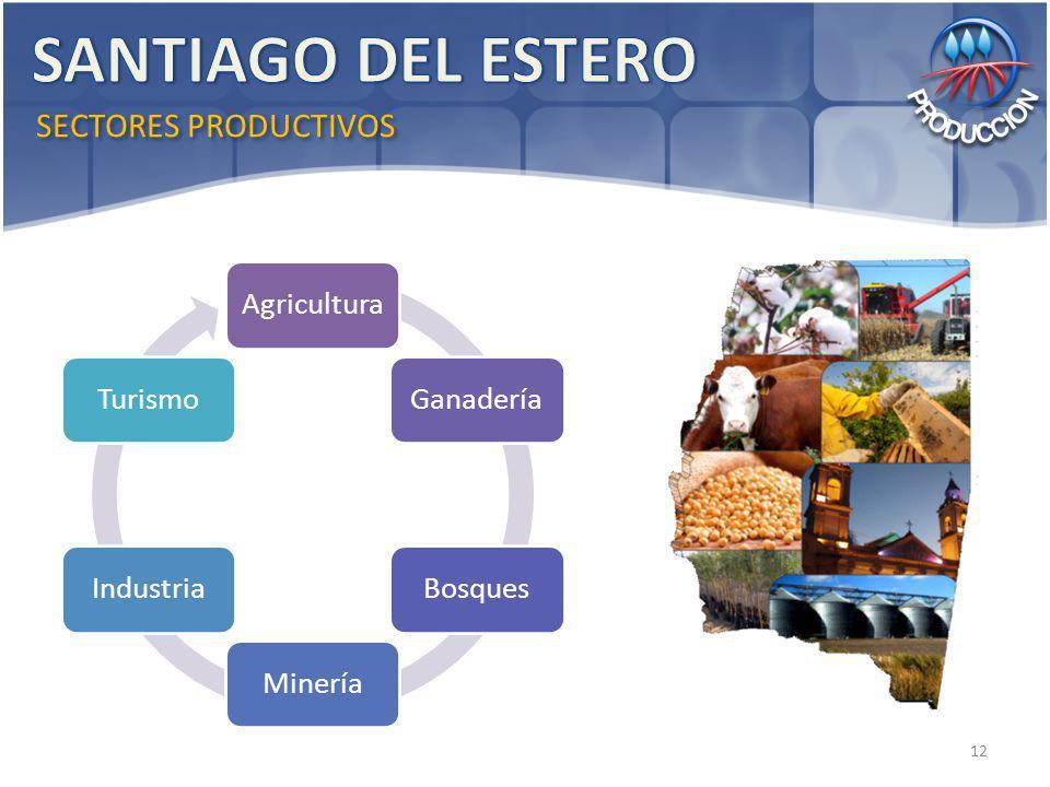 SECTORES PRODUCTIVOS AgriculturaGanaderíaBosquesMineríaIndustriaTurismo 12
