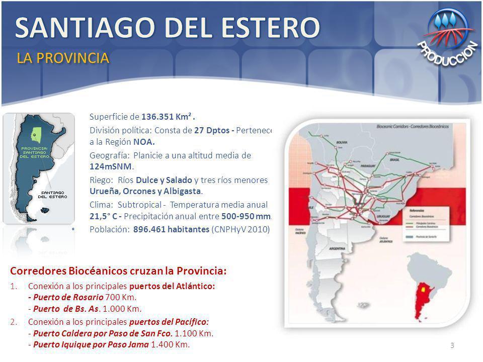 Superficie de 136.351 Km². División política: Consta de 27 Dptos - Pertenece a la Región NOA. Geografía: Planicie a una altitud media de 124mSNM. Rieg