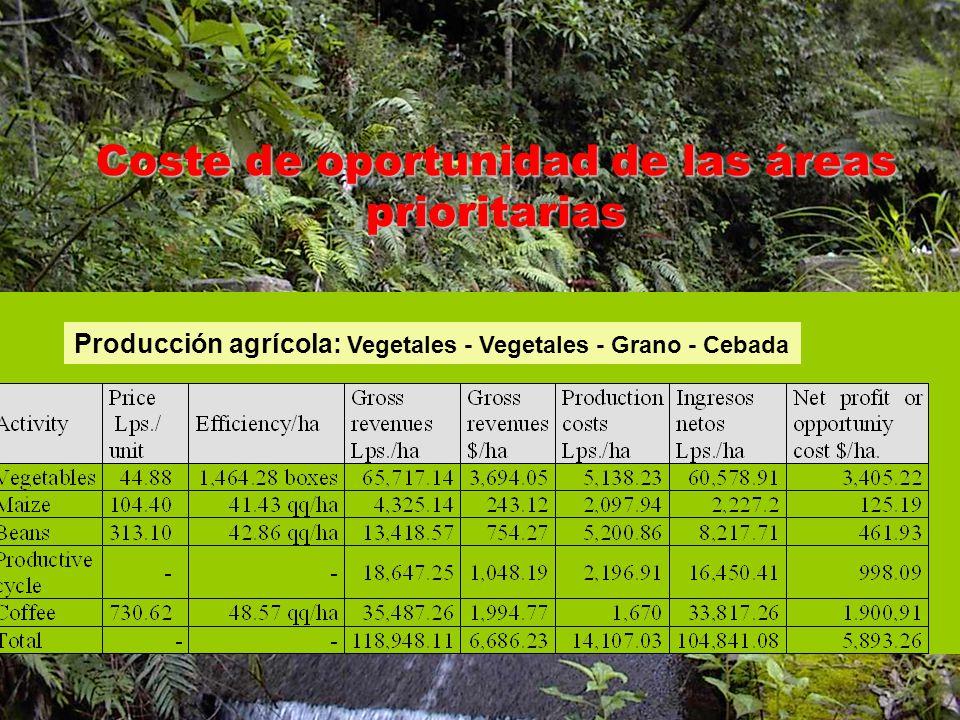 Coste de oportunidad de las áreas prioritarias Producción agrícola: Vegetales - Vegetales - Grano - Cebada