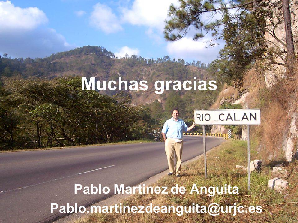Muchas gracias Pablo Martinez de Anguita Pablo.martinezdeanguita@urjc.es