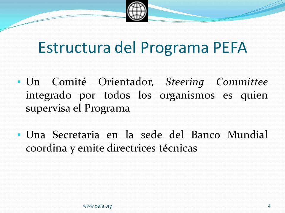 Estructura del Programa PEFA Un Comité Orientador, Steering Committee integrado por todos los organismos es quien supervisa el Programa Una Secretaria