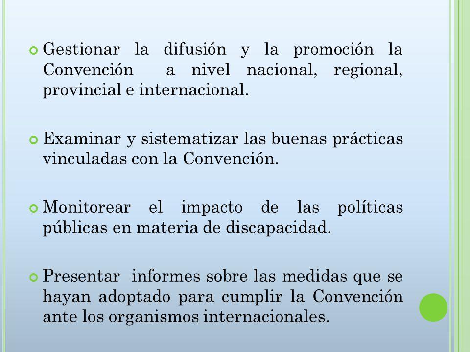 Gestionar la difusión y la promoción la Convención a nivel nacional, regional, provincial e internacional.