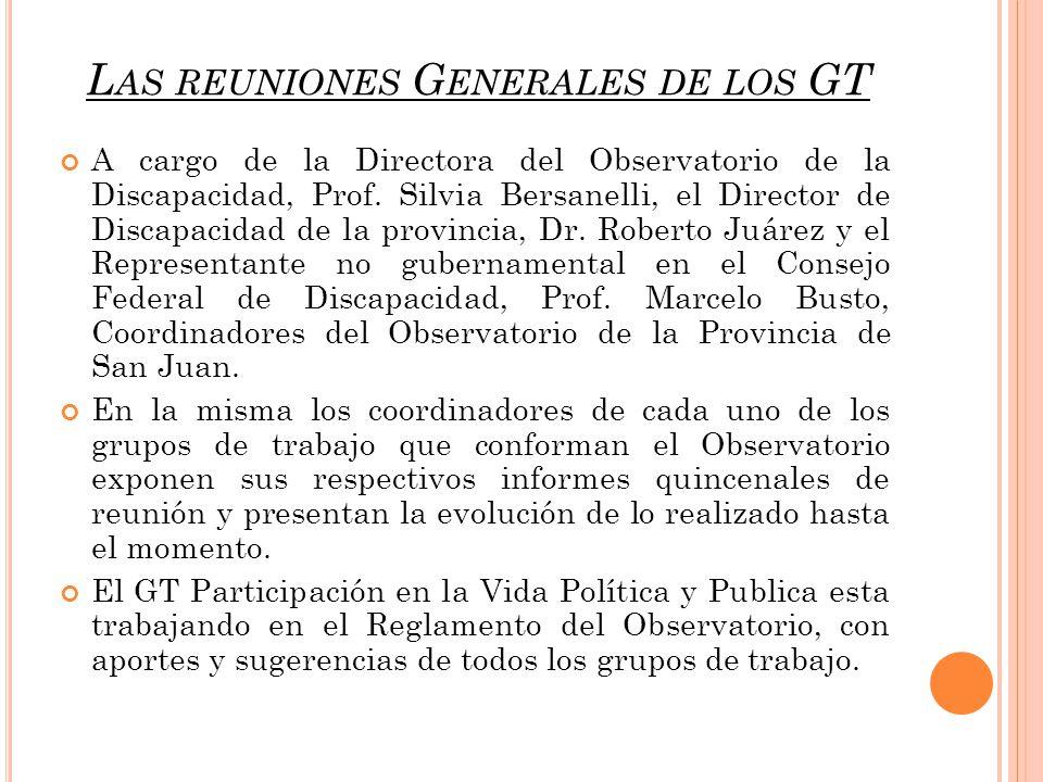 L AS REUNIONES G ENERALES DE LOS GT A cargo de la Directora del Observatorio de la Discapacidad, Prof.