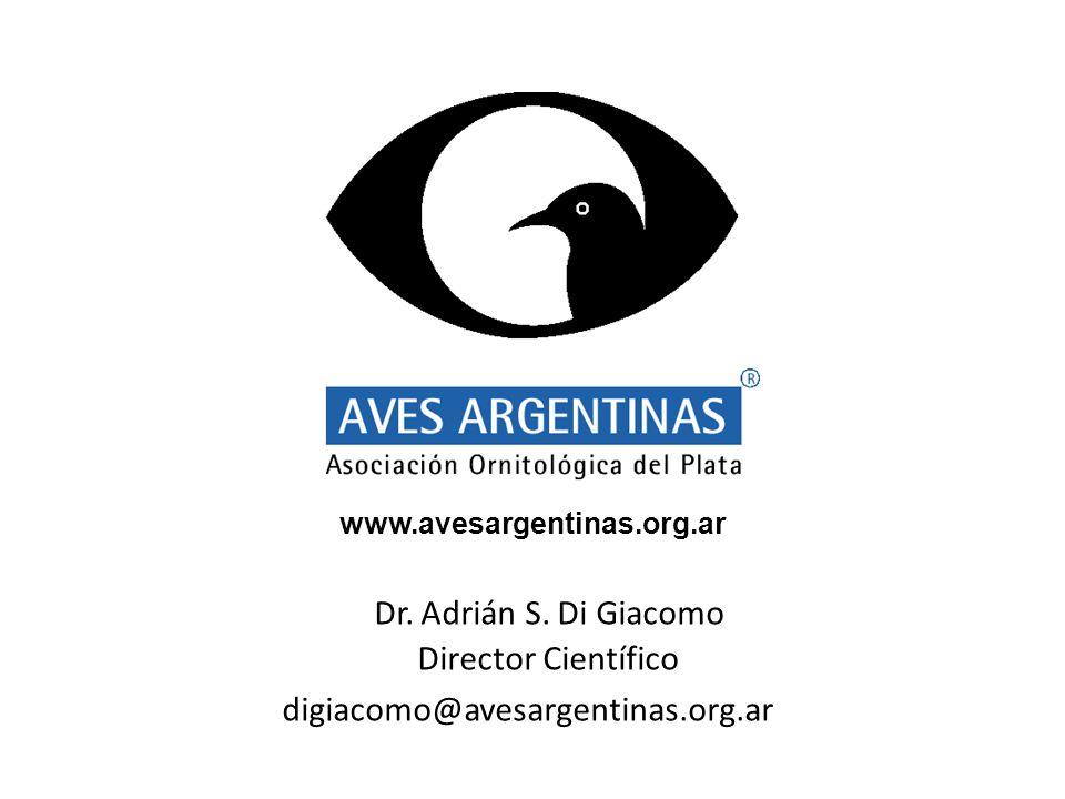Dr. Adrián S.