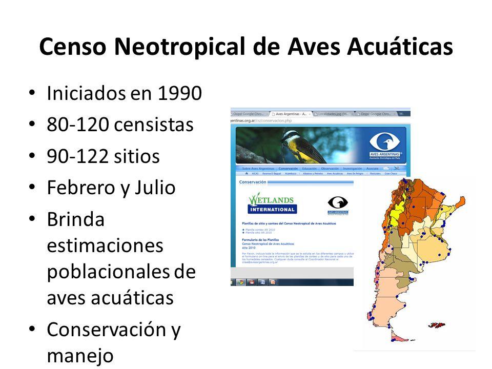 Censo Neotropical de Aves Acuáticas Iniciados en 1990 80-120 censistas 90-122 sitios Febrero y Julio Brinda estimaciones poblacionales de aves acuáticas Conservación y manejo