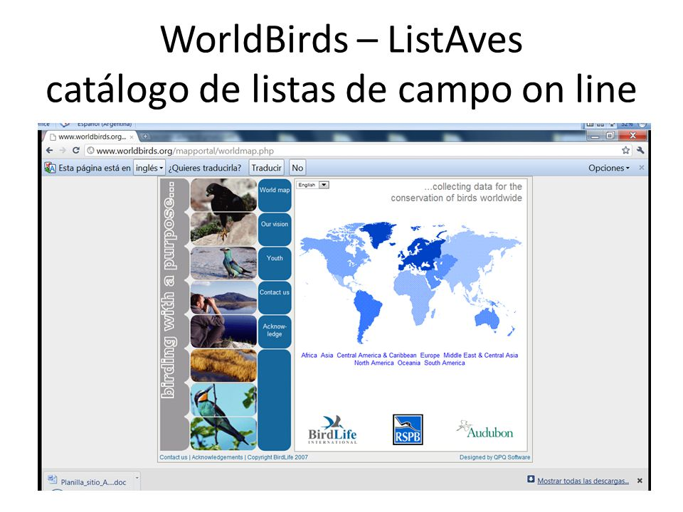 WorldBirds – ListAves catálogo de listas de campo on line
