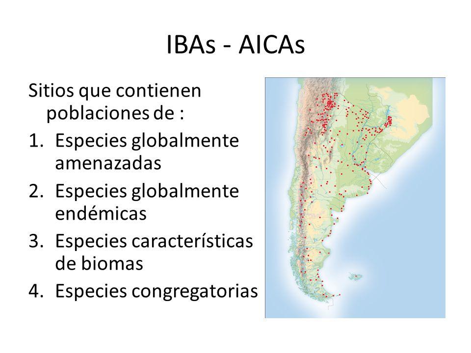 IBAs - AICAs Sitios que contienen poblaciones de : 1.Especies globalmente amenazadas 2.Especies globalmente endémicas 3.Especies características de biomas 4.Especies congregatorias