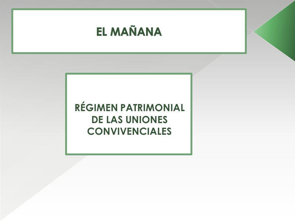 RÉGIMEN PATRIMONIAL DE LAS UNIONES CONVIVENCIALES