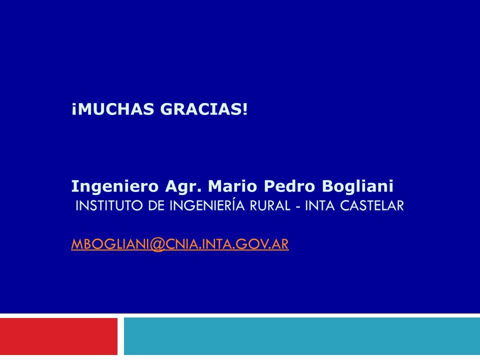 ¡MUCHAS GRACIAS! Ingeniero Agr. Mario Pedro Bogliani INSTITUTO DE INGENIERÍA RURAL - INTA CASTELAR MBOGLIANI@CNIA.INTA.GOV.AR MBOGLIANI@CNIA.INTA.GOV.