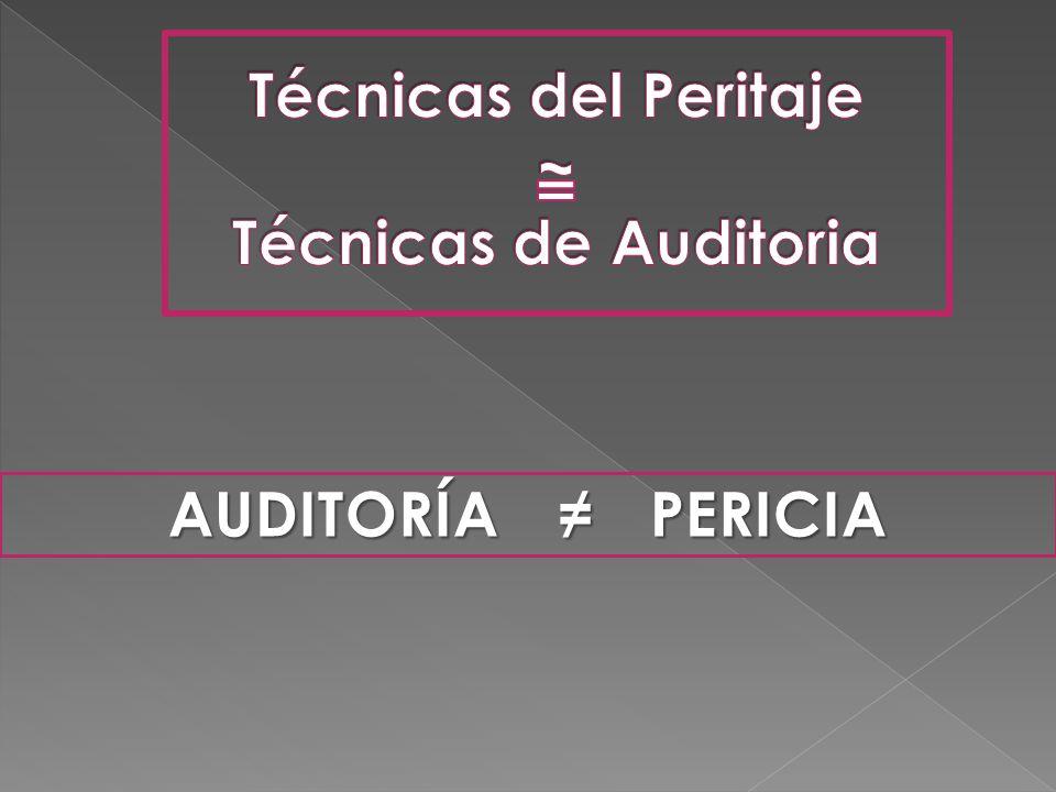 AUDITORÍA PERICIA