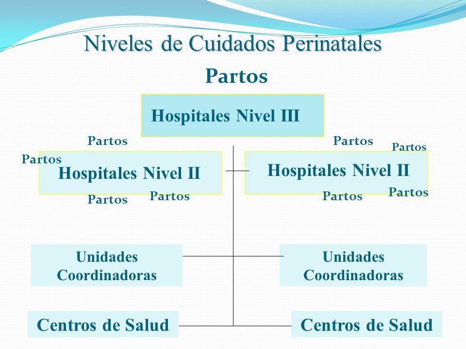 Niveles de Cuidados Perinatales Hospitales Nivel III Hospitales Nivel II Centros de Salud Unidades Coordinadoras Partos