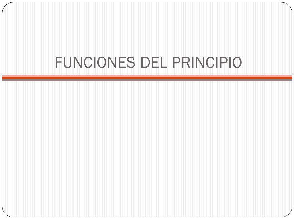FUNCIONES DEL PRINCIPIO