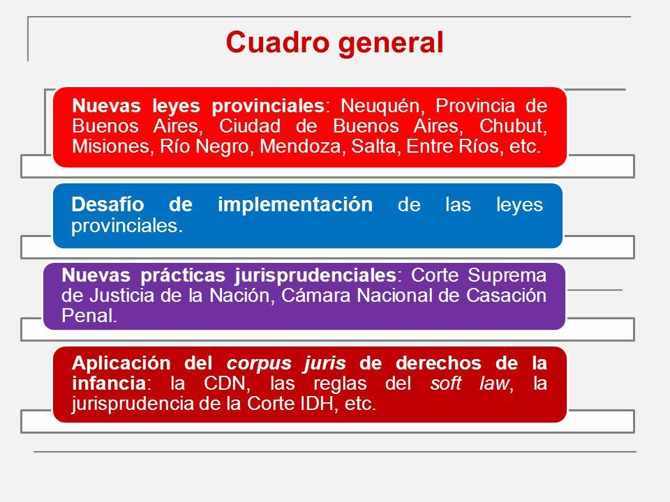 Cuadro general Nuevas leyes provinciales: Neuquén, Provincia de Buenos Aires, Ciudad de Buenos Aires, Chubut, Misiones, Río Negro, Mendoza, Salta, Entre Ríos, etc.