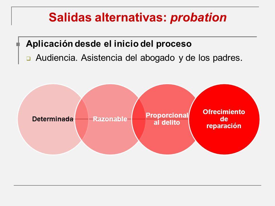 Salidas alternativas: probation Aplicación desde el inicio del proceso Audiencia.