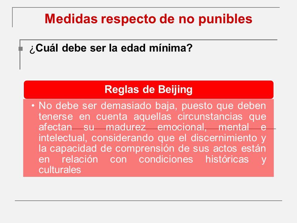 Medidas respecto de no punibles ¿Cuál debe ser la edad mínima.