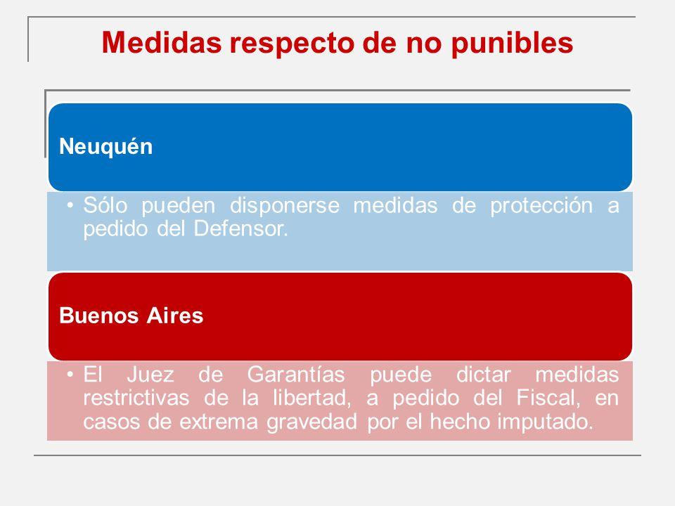 Medidas respecto de no punibles Neuquén Sólo pueden disponerse medidas de protección a pedido del Defensor.