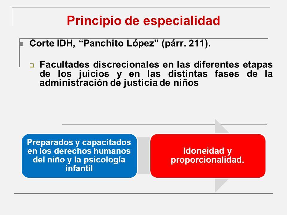 Principio de especialidad Corte IDH, Panchito López (párr.