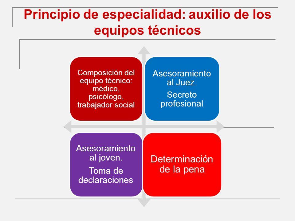 Principio de especialidad: auxilio de los equipos técnicos Composición del equipo técnico: médico, psicólogo, trabajador social Asesoramiento al Juez.