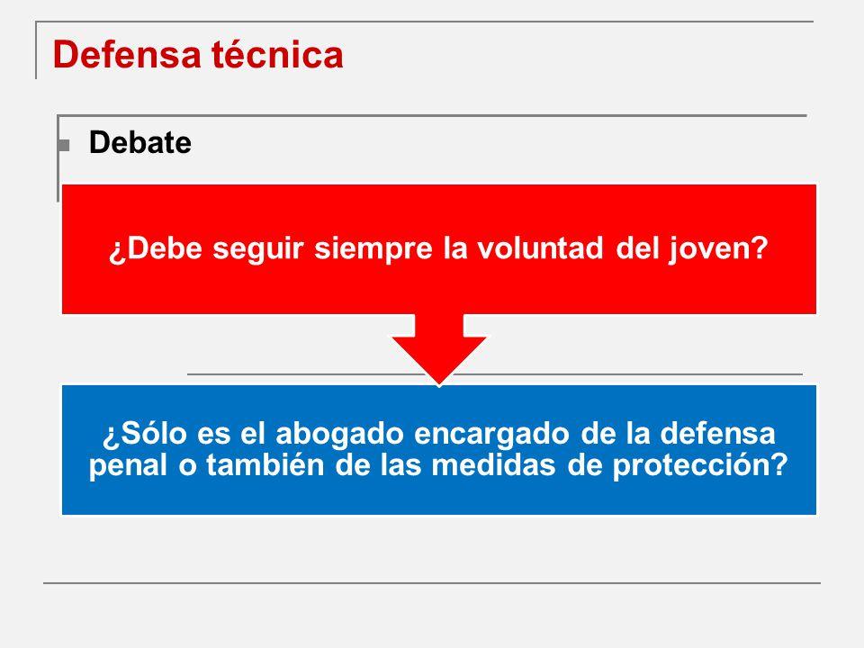 Defensa técnica Debate ¿Sólo es el abogado encargado de la defensa penal o también de las medidas de protección.