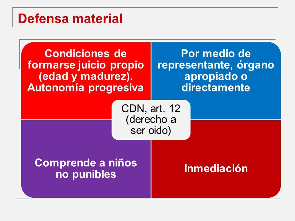 Defensa material Condiciones de formarse juicio propio (edad y madurez).